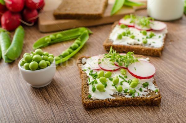 Egészséges teljeskiőrlésű kenyér gyógynövények krém sajt Stock fotó © Peteer