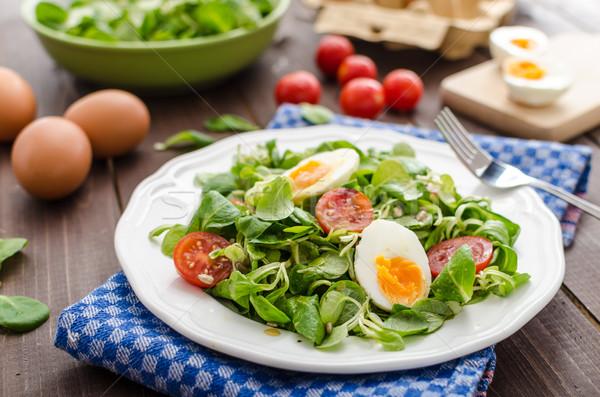 салата Салат яйца помидоров меда горчица Сток-фото © Peteer