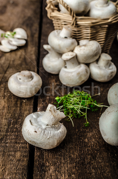 Gombák nyers friss bio egyszerű termék Stock fotó © Peteer