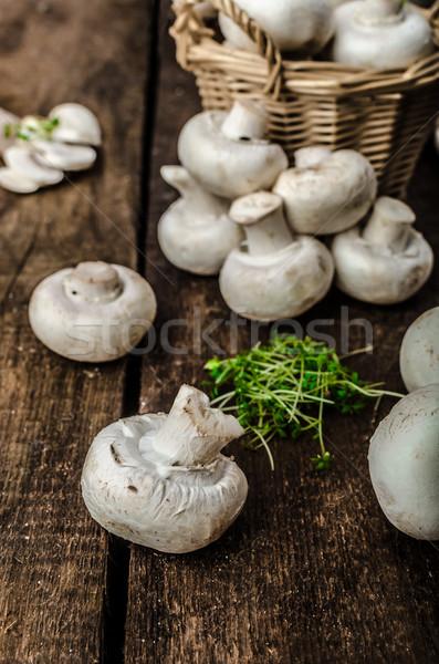 Setas crudo frescos bio simple producto Foto stock © Peteer