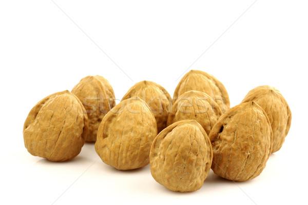 Bos voedsel najaar noten objecten geïsoleerd Stockfoto © peter_zijlstra