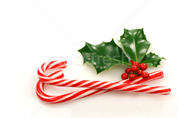 christmas candy canes with a branch of holly Stock photo © peter_zijlstra