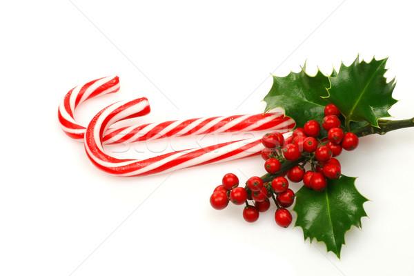 Рождества конфеты филиала продовольствие красный празднования Сток-фото © peter_zijlstra