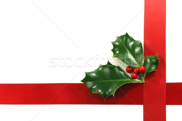 Christmas ornament grens bessen kamer tekst Stockfoto © peter_zijlstra