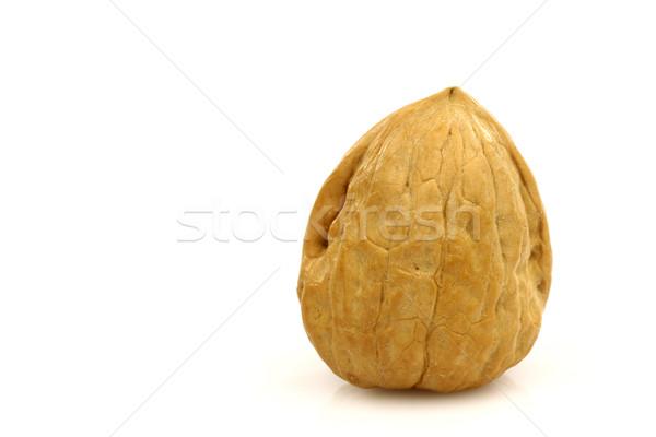 Een geheel walnoot witte voedsel vruchten Stockfoto © peter_zijlstra