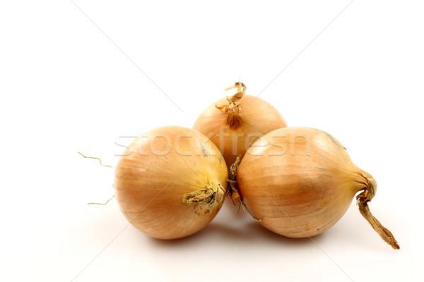 3  ブラウン 玉葱 白 皮膚 野菜 ストックフォト © peter_zijlstra