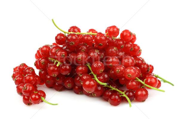красный смородина белый продовольствие зеленый Сток-фото © peter_zijlstra