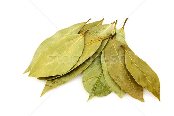 Köteg levelek fehér fa étel minta Stock fotó © peter_zijlstra