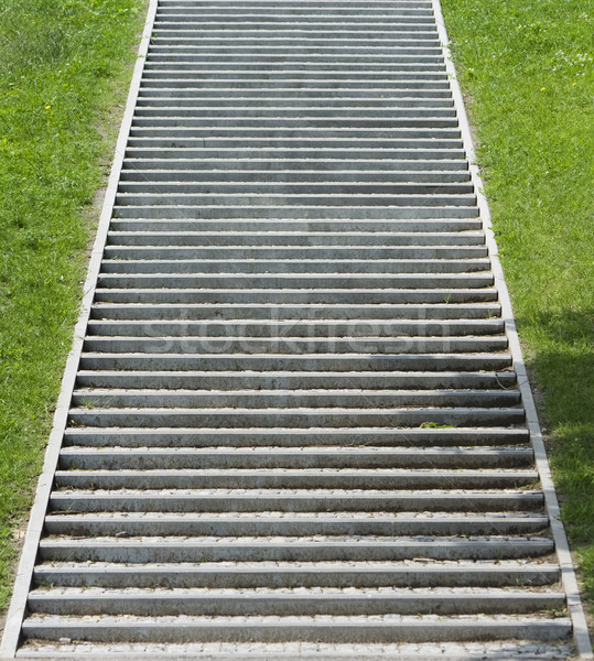 手順 飛行 具体的な 石 草 ストックフォト © peterguess