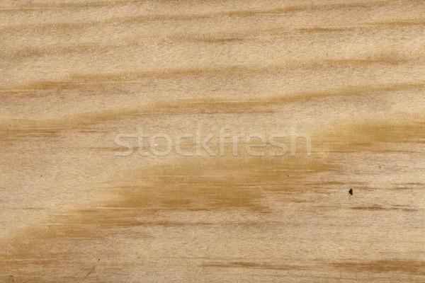 自然 木の質感 本当の ツリー 木材 抽象的な ストックフォト © peterguess
