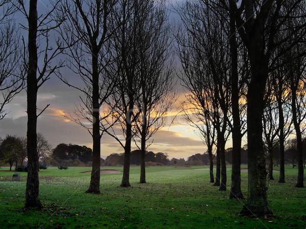 日の出 ゴルフコース 雲 太陽 シルエット 天気 ストックフォト © peterguess