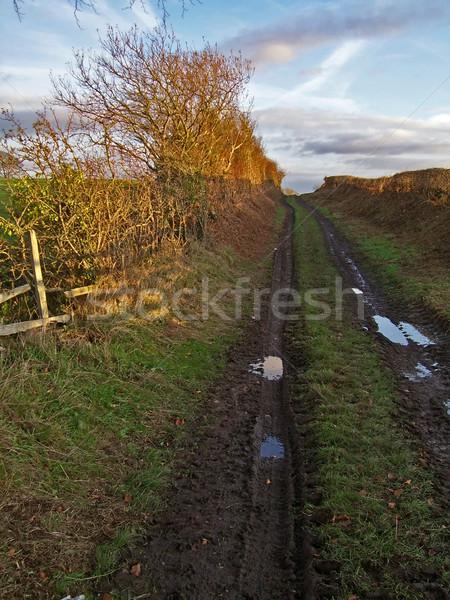Stock photo: Farm Track