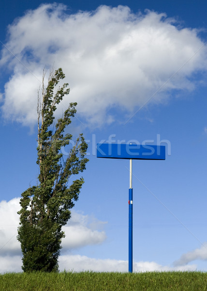 Signe arbre post blanche nuage Photo stock © peterguess