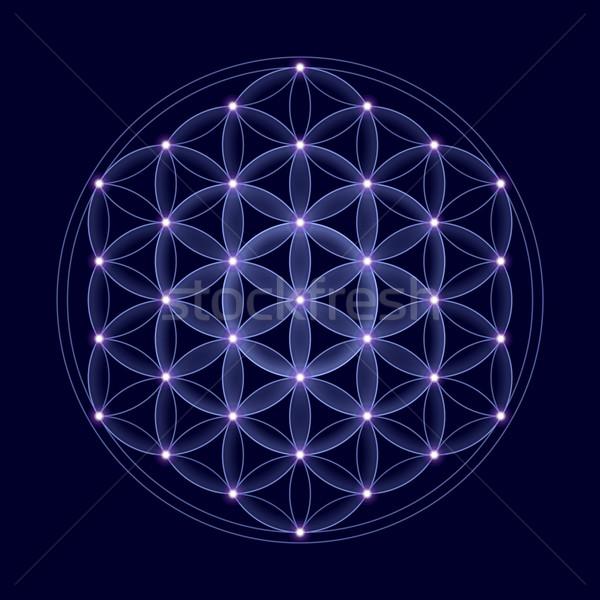 Kozmik çiçek hayat Yıldız karanlık mavi Stok fotoğraf © PeterHermesFurian