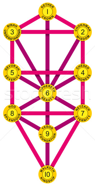 Sephirot and Tree of Life Yellow Magenta Stock photo © PeterHermesFurian