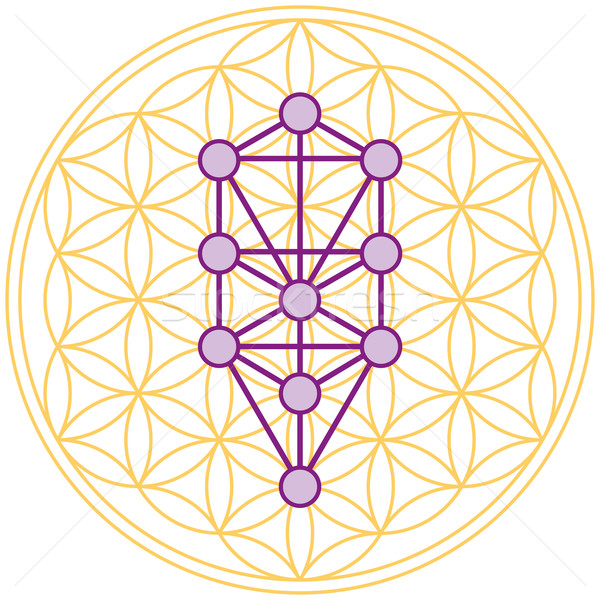Tree Of Life Fits Perfect In The Flower Of Life Stock photo © PeterHermesFurian