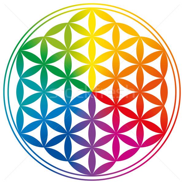 Flower of Life Rainbow Gradients Stock photo © PeterHermesFurian