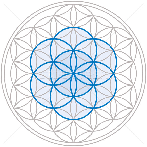 Seed Of Life In Flower Of Life Stock photo © PeterHermesFurian