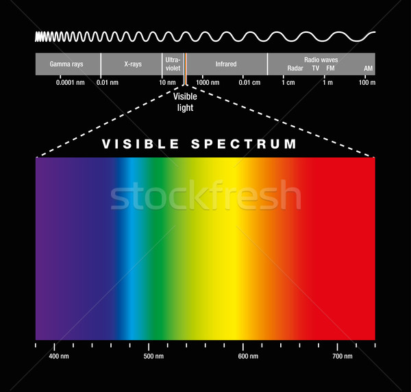Electromagnetic Spectrum And Visible Light Stock photo © PeterHermesFurian