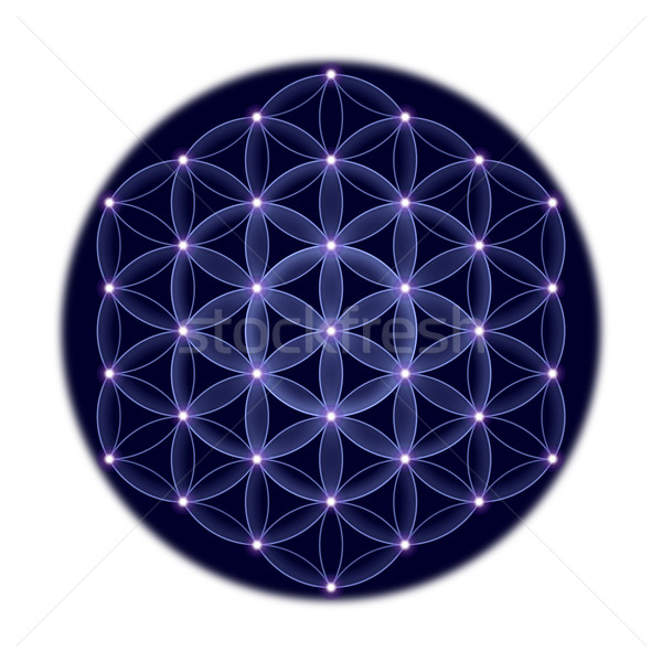 Cosmic Flower of Life With Stars on White Background Stock photo © PeterHermesFurian