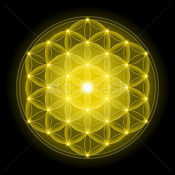 Arany virág élet fekete spirituális szimbólum Stock fotó © PeterHermesFurian