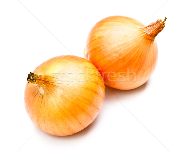 Two Onions Stock photo © PetrMalyshev