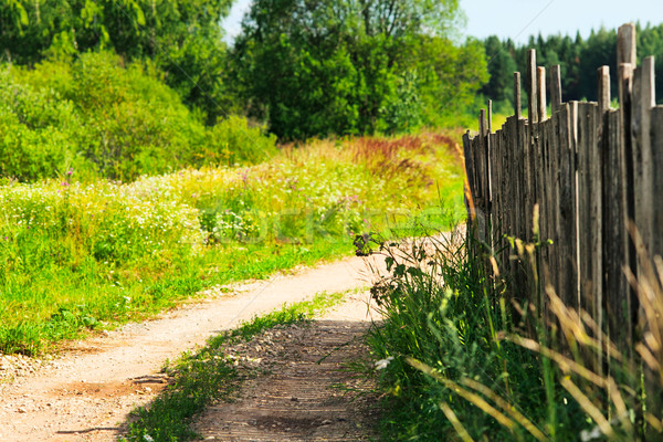 Countryside Road Stock photo © PetrMalyshev