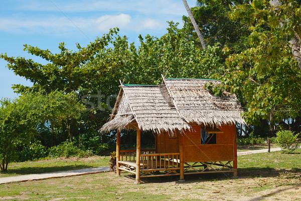 Geleneksel Taylandlı bungalov başvurmak orman kıyı Stok fotoğraf © PetrMalyshev