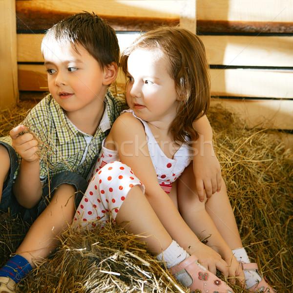 Stock photo: Children on Hayloft