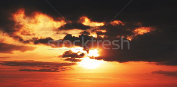 Beautiful Sunset  Stock photo © PetrMalyshev