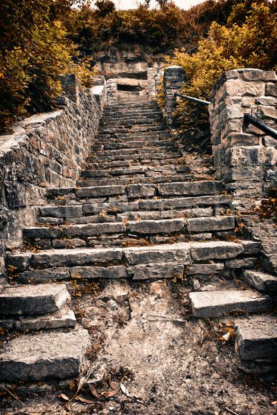 Kő lépcsőfeljáró öreg domb fa természet Stock fotó © PetrMalyshev
