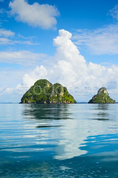 Deniz ağaçlar Tayland Stok fotoğraf © PetrMalyshev