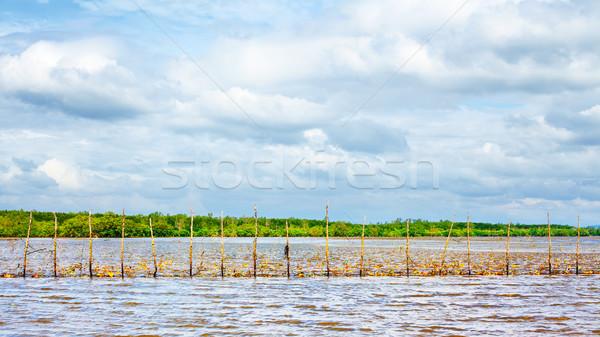 Pescaria Tailândia baixo maré céu comida Foto stock © PetrMalyshev