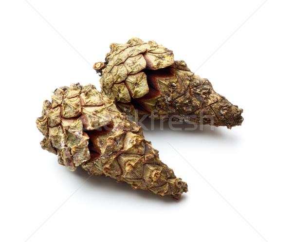 pinecones Stock photo © PetrMalyshev