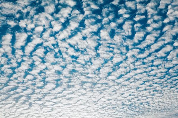 Cloudscape With Altocumulus Clouds Stock photo © PetrMalyshev