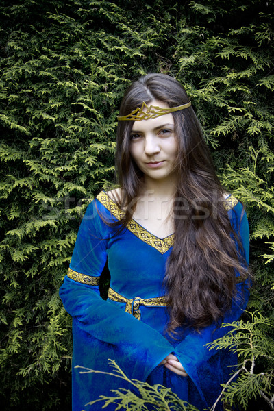 elf princess  looking from bush Stock photo © PetrMalyshev