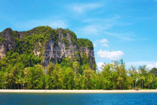 Andaman Seashore Stock photo © PetrMalyshev