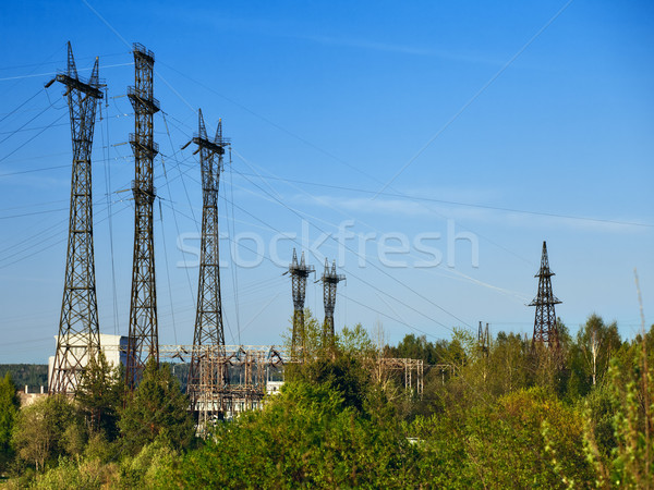 Substation in Forest Stock photo © PetrMalyshev