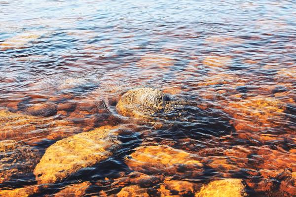Fluss Unterseite Ansicht Felsen Wasser Stock foto © PetrMalyshev