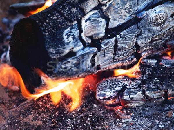 Bright Bonfire Flame Stock photo © PetrMalyshev
