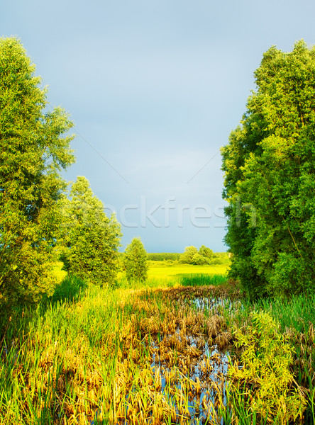 Nature Rural Landscape Stock photo © PetrMalyshev