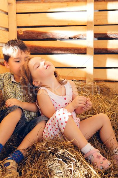 Children on Hayloft Stock photo © PetrMalyshev