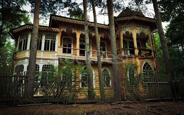 abandoned house Stock photo © PetrMalyshev