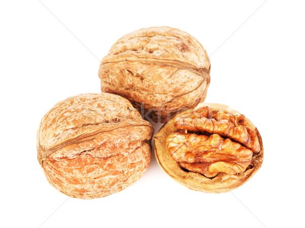 Dried Walnuts Isolated Stock photo © PetrMalyshev