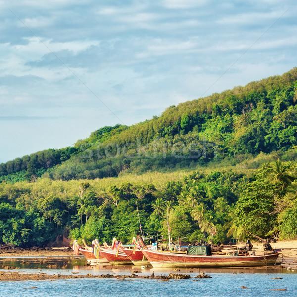 Andaman Shore Stock photo © PetrMalyshev