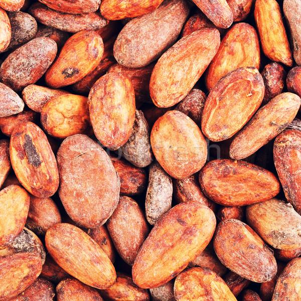 Kakao fasulye taze bütün gıda Stok fotoğraf © PetrMalyshev