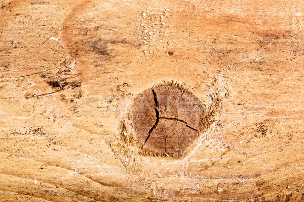 Textura primer plano caliente marrón madera Foto stock © PetrMalyshev