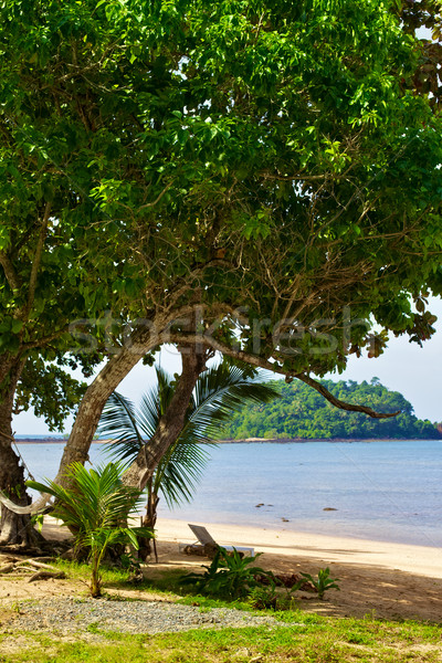 Tropical Resort Stock photo © PetrMalyshev