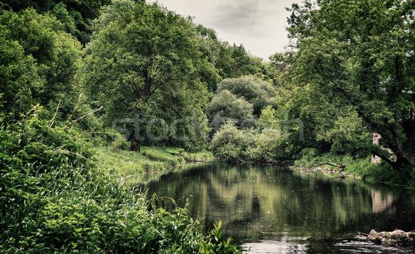 Stil meer bos bewolkt zomer Stockfoto © PetrMalyshev