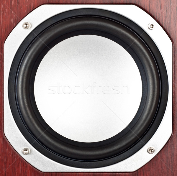 speaker closeup Stock photo © PetrMalyshev